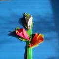 Мастер-класс по изготовлению цветов