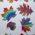 «Яркими красками листья сверкают». Рисование на осенних листьях