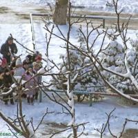 Фоторепортаж о школьной прогулке «Наблюдение за снегом и льдом»