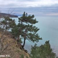 «Интересные места Черноморского побережья». Фоторепортаж из серии «Большое краеведение»