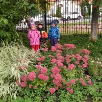 Фотоотчёт «Осенняя прогулка с детьми старшей группы»