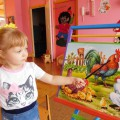 Информационно-познавательный проект «Петушок и его семья» с детьми раннего возраста