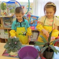 Анализ системы экологического образования дошкольников как средства реализации приоритетного направления деятельности ДОУ