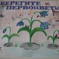 Наша стенгазета «Берегите первоцветы!»