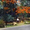 Мои воспоминания о Кубе. Часть 6