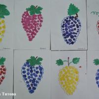 Конспект НОД по нетрадиционному рисованию штампами «Виноградная гроздь» для детей старшего дошкольного возраста