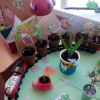 «Огород на окне» в детском саду