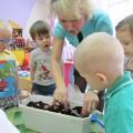 Опытно-экпериментальная деятельность детей во второй младшей группе «Посадка лука»