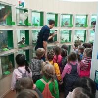 Фотоотчет о посещении краеведческого музея