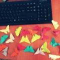 Мастер-класс. Бабочка в технике оригами.