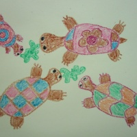 Мастер-класс по рисованию черепахи с детьми старшего дошкольного возраста