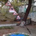 «Террариум». Станция «Экологической тропы» детского сада