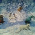Мастер-класс по созданию макета «Животные Арктики»
