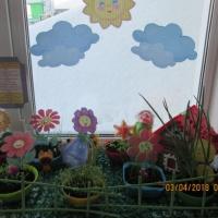 Фотоотчет «Цветочная полянка— веселый огород на окне»