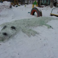 Фотоотчет «Зимняя сказка двора»