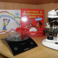 Экспериментирование в детском саду. Экологическое воспитание детей дошкольного возраста