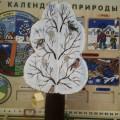 Дидактическое пособие «Дерево «Времена года»