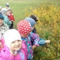 Наша первая экскурсия в лес.