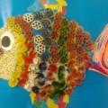 «Цветные рыбки» (фотоотчет)