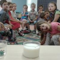 Познавательно-творческий исследовательский краткосрочный проект «Мир воды»