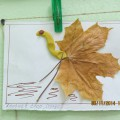Аппликации из осенних листьев (фотоотчет)