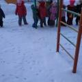 Фотоотчет «Кто расхаживал по снегу?»