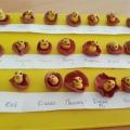 Занятие по лепке «Птенчики в гнездышке» для детей второй младшей группы