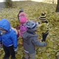 Целевая прогулка во второй младшей группе «Листопад»