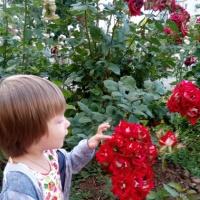 Консультация для родителей «Учите детей доброте!»