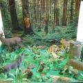Макет «Подводный мир» для детского сада своими руками