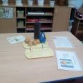 Проект «Лук— наш друг» в подготовительной к школе группе