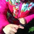 Прогулка-наблюдение за насекомыми (средняя группа)