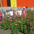 Проект ландшафтного дизайна цветочной клумбы на территории детского сада «Цветочная поляна»