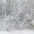 Зимний пейзаж— фоторепортаж
