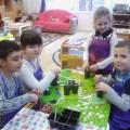 Проект по экологии в подготовительной группе «Удивительный мир растений»