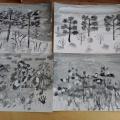 Конспект занятия по рисованию в технике гризайль «Сосны»