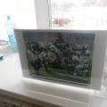 Конспект мастер-класса по рисованию весеннего пейзажа гуашью «Яблоневый цвет» (подготовительная группа)