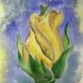 Мастер-класс по рисованию «Роза»