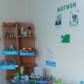 Эколого-социально-творческий проект «Моя Мегиония»