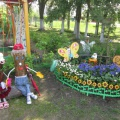 Цветы нашего участка