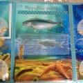 Лэпбук «Морские рыбки»