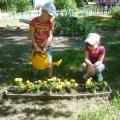Фотоотчёт «Вот какой наш огород!»