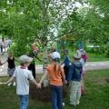 НОД «Наблюдения за деревьями на прогулке». Фотоотчёт