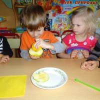 Опыт «Исследование содержания железа в яблоках». Экспериментальная деятельность детей