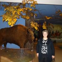 «Музей Природы в Беловежской пуще». Мои впечатления о поездке