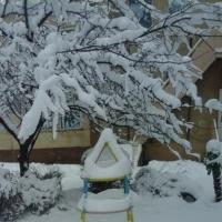 Фотоотчёт «Один зимний день из жизни в детском саду»