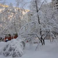 Фотоотчет о прогулке «Зимушка-зима ребятам радость принесла»