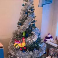 Проект зимних каникул в подготовительной группе «Новый год-волшебник сам чудеса подарит нам»