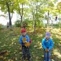 Проект «Деревья осенью»