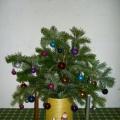 Декоративное кашпо «Золотая соломка» своими руками. Мастер-класс по работе с бросовым материалом